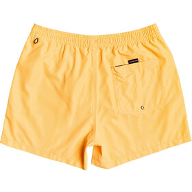 Quiksilver Everyday Volley 15 Shorts Hombre, orange pop